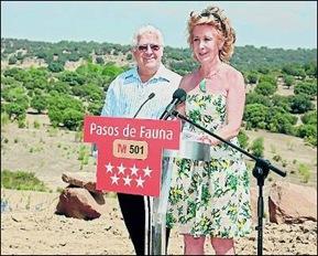 Aguirre y la M501