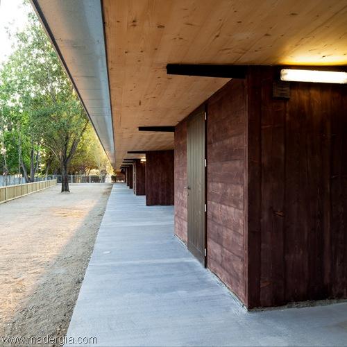escuela-panel-contralaminado-madera (14)