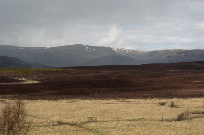 MONADHLIATH FROM WADE'S ROAD