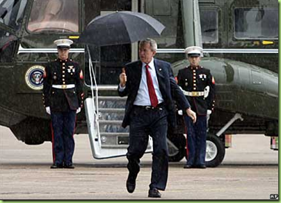 Bush-Umbrella-1
