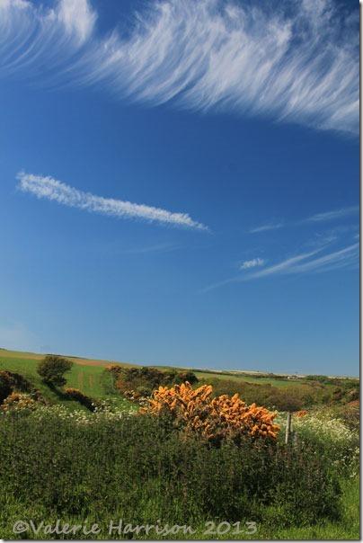 50-clouds