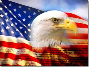 bald_eagle_head_and_american_flag1_detail
