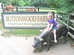 Buttonwood park 7.25.2013 Bellz on the pig2