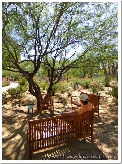Arizona Spring 2012 129