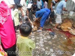 Suasana Pemotongan Hewan Kurban di Masjid Raya Kota Teluk Kuantan (10)