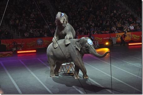 circus fun 021613 039