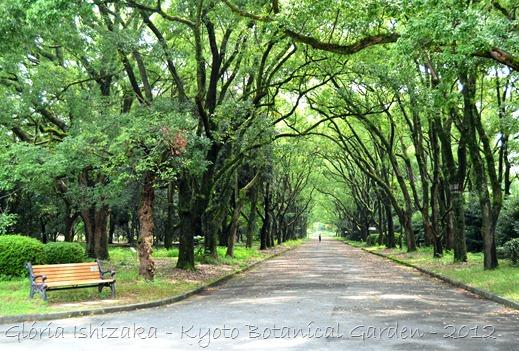 Gloria Ishizaka - Jardim Botanico de Kyoto 2012