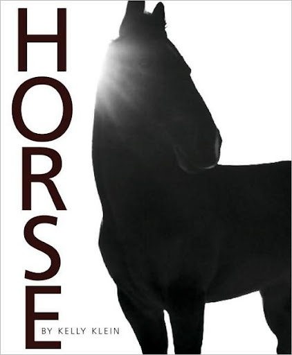 A stunning coffee table book. Horse by Kelly Klein (barnesandnoble.com)