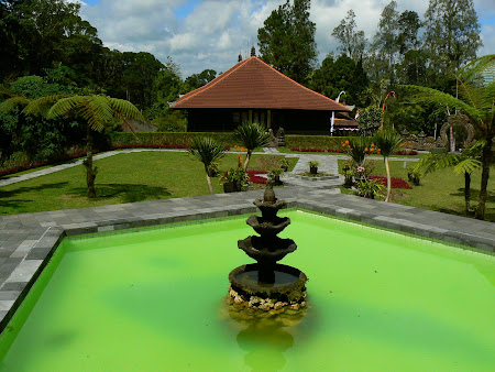 Bali travel: Bedugul botanical garden