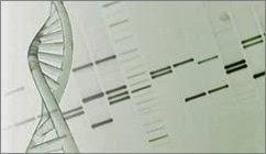 genetics_0513blog_380766