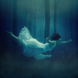 Mystic. by Dmitry Laudin - Digital Art People ( girl, mysticism, fly, underwater, forest )