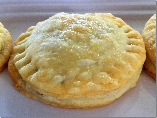 Mini Blueberry Hand Pies 6-11-12