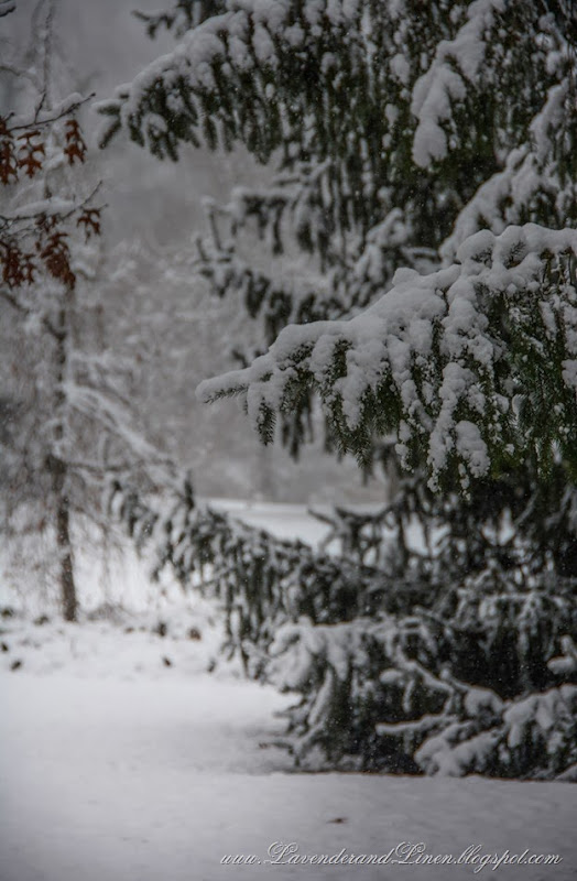 Snow scene - LavenderandLinen.blogspot.com