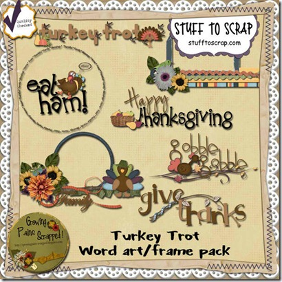 GPS_TT_Word art and frame preview