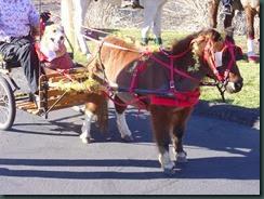 Christmas Parade, Los Osos 2013 001
