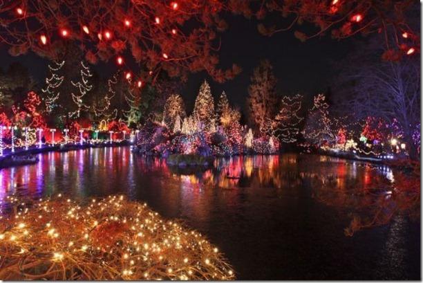 best-christmas-lights-houses-44