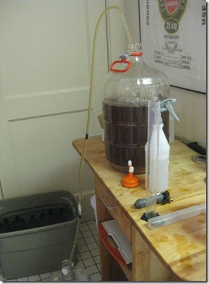 Transferring old beer onto dry hops