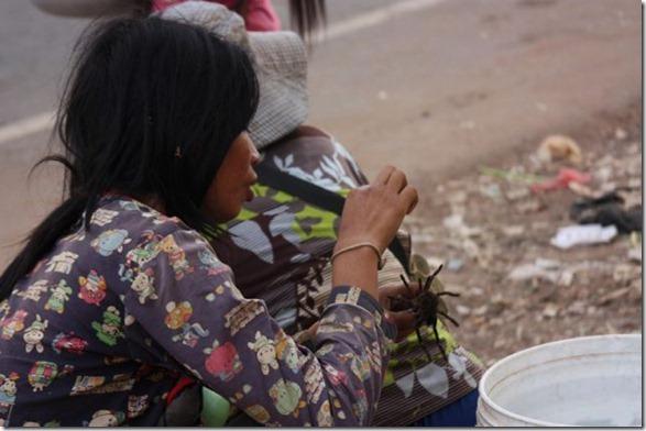 spider-food-cambodia-15