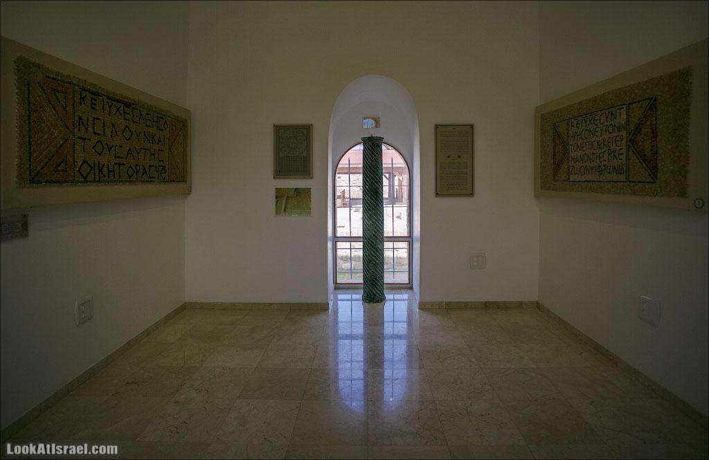 Мозаики от «Доброго самаритянина» (israel  путешествия иудея и самария и интересно и полезно выставки музеи фестивали  20130215 good samaritan mosaic 021 5D3 8390)