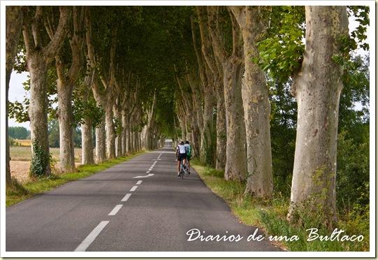 Ciclistas-1