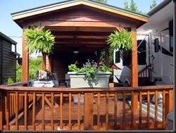 Deck ferns 1