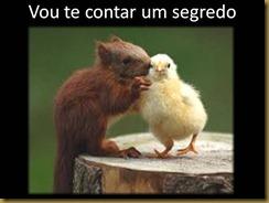 acao_reacao