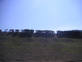 20121008-05.jpg