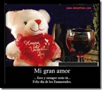 enamorarse 14febrero 01 (23)