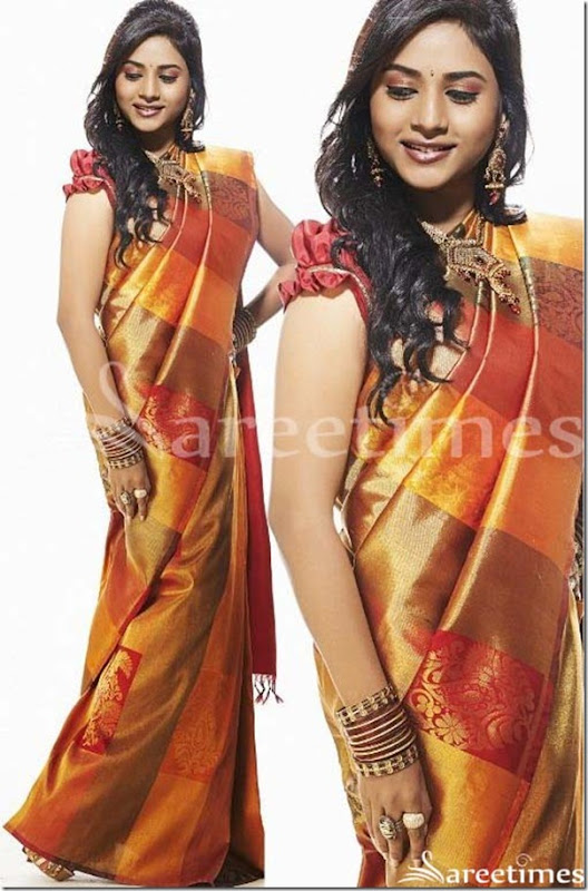 Suzi_Traditional_Silk_Saree