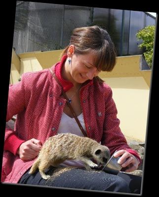 Serena feeding Meerkat DSCF4150