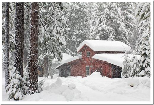 121223_snow_007