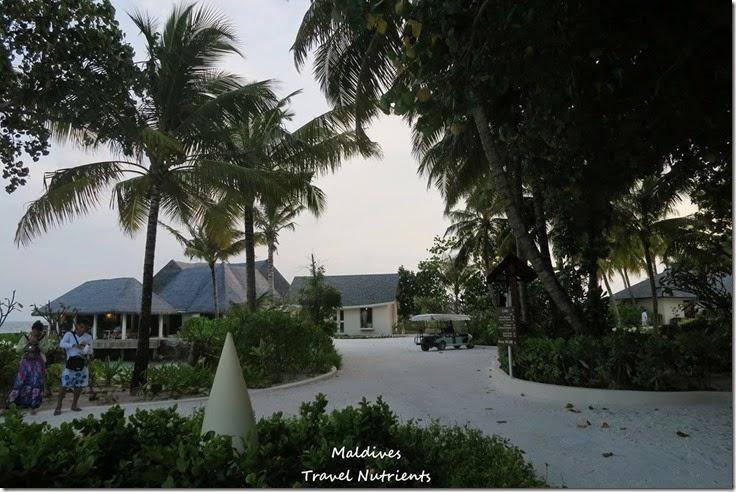 馬爾地夫 Centara渡假村 (35)