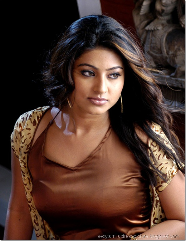 sneha_sexy_boobs_stills