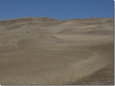 503 great dune (640x480) (2)