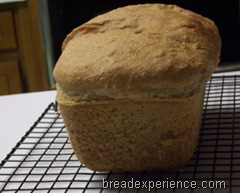 sprouted-wheat-bread 038