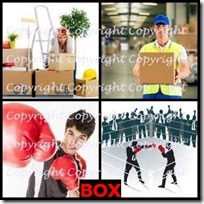 BOX- 4 Pics 1 Word Answers 3 Letters
