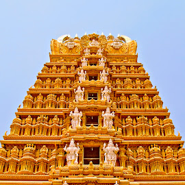 Standing Tall by Balaji Nagarajan - Buildings & Architecture Public & Historical ( canon, 7d, nanjangud, india, architecture, karnataka, dslr )