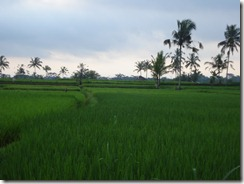 Tegalalang, Ubud