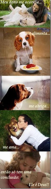 teologia do cachorro - m