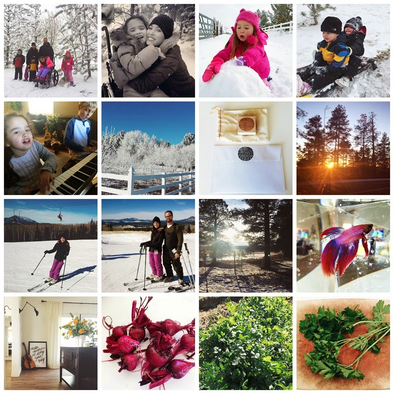 PicMonkey Collage1-13-15