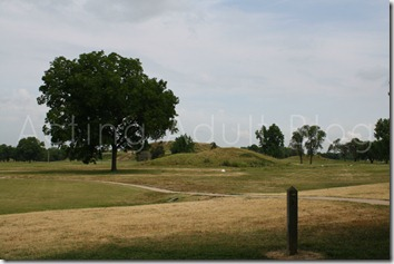 Cahokia Mounds 2