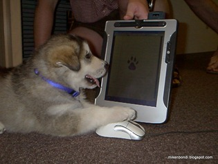2001 Dougal uses prototype tablet pc