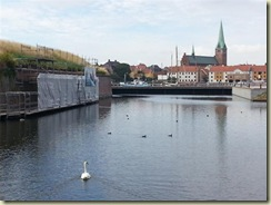 20130729_ Kronborg Castle swan (Small)