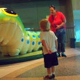 Houston Museum of Natural Science - 116_2842.JPG