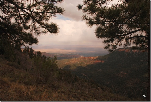 05-18-13 B Kaibab National Forest (7)a