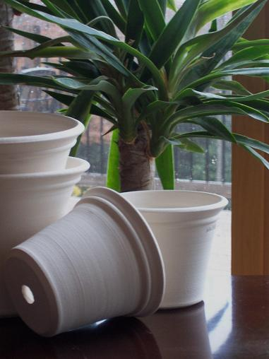 I think white planters are stunning. They're a nice change of pace from the normal earthy tones. (benwolffpottery.com)
