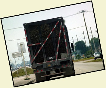 07 - Following a Sugar Cane Truck