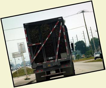 07 - Following a Sugar Cane Truck