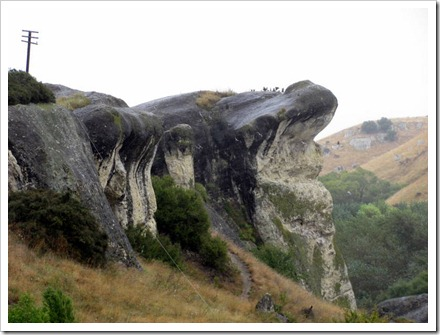 Frog rock on the Weka Pass railway.
