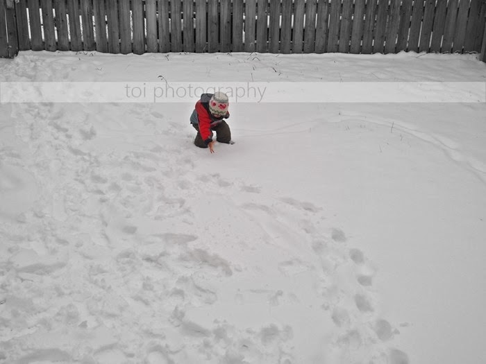 AOI-2013-first-winter-snow_thumb2